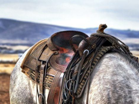 cowboy jokes